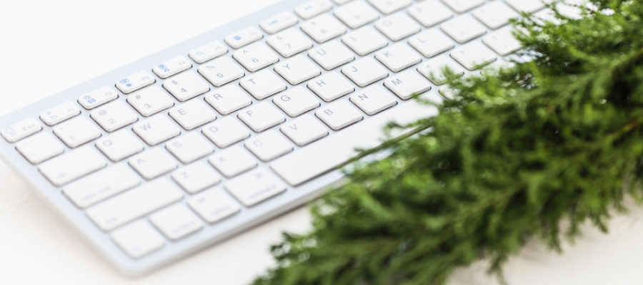 evergreen-tree-resting-near-a-keyboard-to-represent-evergreen-content